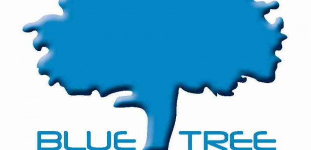 Blue Tree Marketing offers simple solution to Online Auction Fundraising