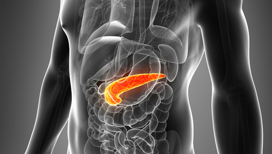 Could Bacterial Infections be the Cause of Pancreatic Cancer?