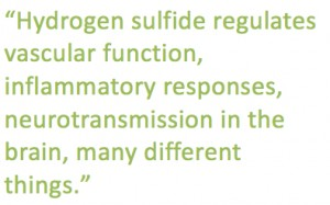 Hydrogen Sulfide Potential for Cancer Therapy